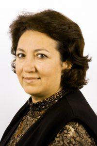 Nozha Boujemaa, Chercheur en informatique.